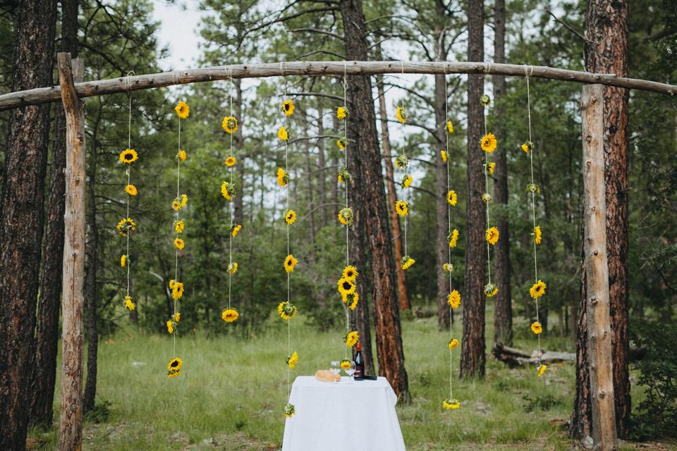 Jay & Jess, Weddings, Flagstaff, AZ-38.jpg