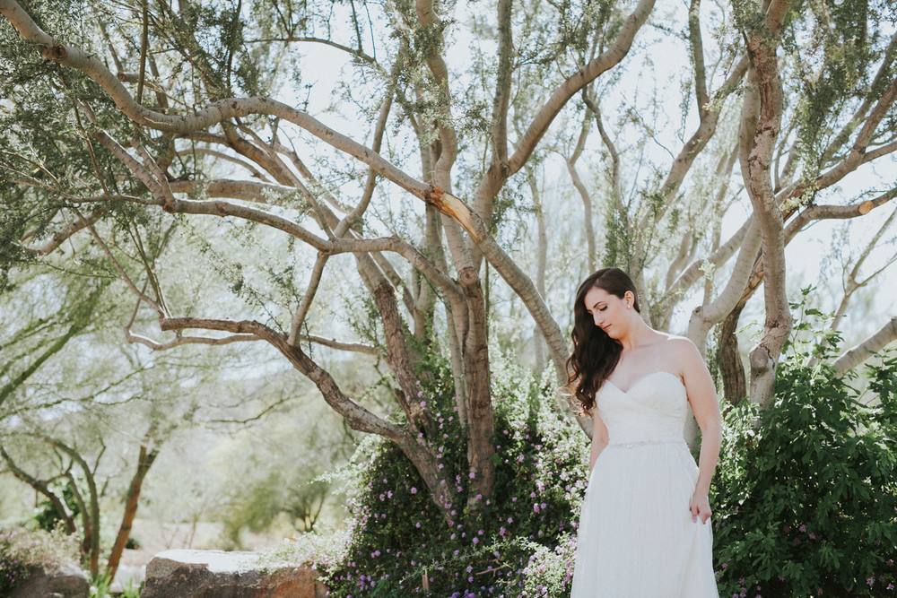 Jay & Jess, Weddings, Scottsdale, AZ 40.jpg
