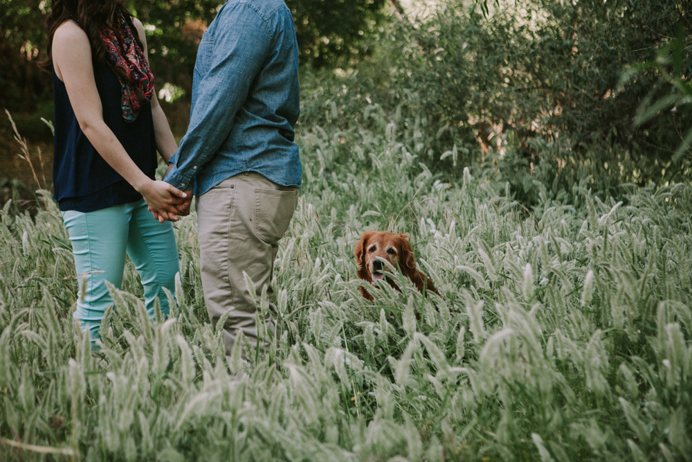 Jay & Jess, Engaged, Cave Creek, AZ 11.jpg