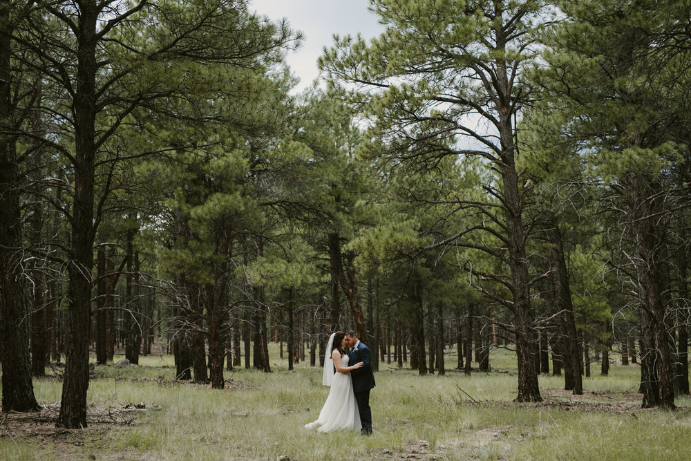 Jay & Jason, Weddings, Flagstaff, AZ 39.jpg