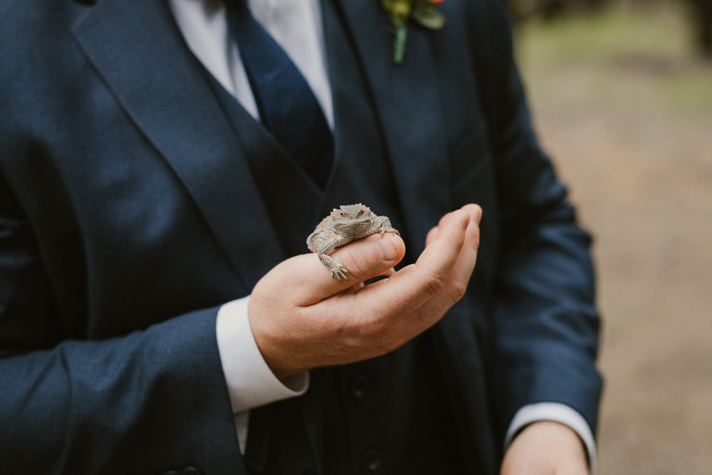 Jay & Jason, Weddings, Flagstaff, AZ 43.jpg