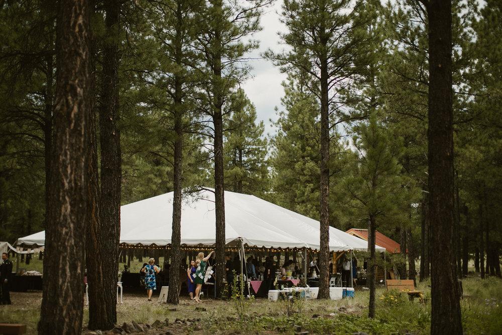 Jay & Jason, Weddings, Flagstaff, AZ 107.jpg