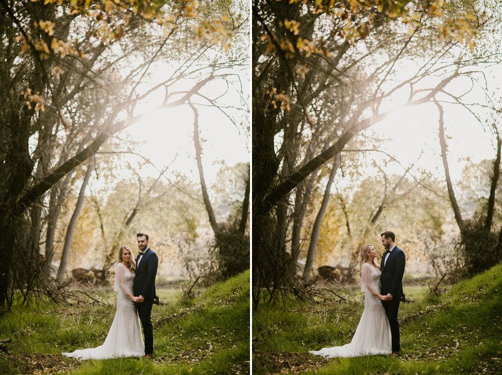 Jay & Jess, Weddings, Flagstaff, AZ 52.jpg