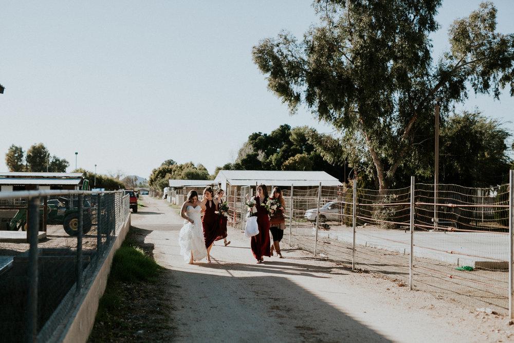 Jay & Jess, Weddings, Phoenix, AZ 15.jpg