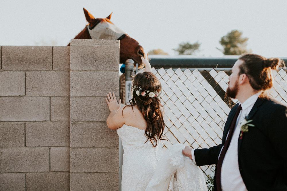 Jay & Jess, Weddings, Phoenix, AZ 75.jpg