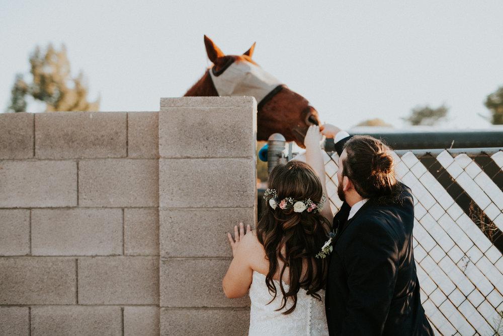 Jay & Jess, Weddings, Phoenix, AZ 76.jpg