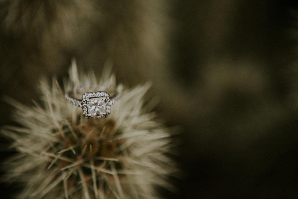 ARMAN + NICOLE | Engaged-1111.jpg
