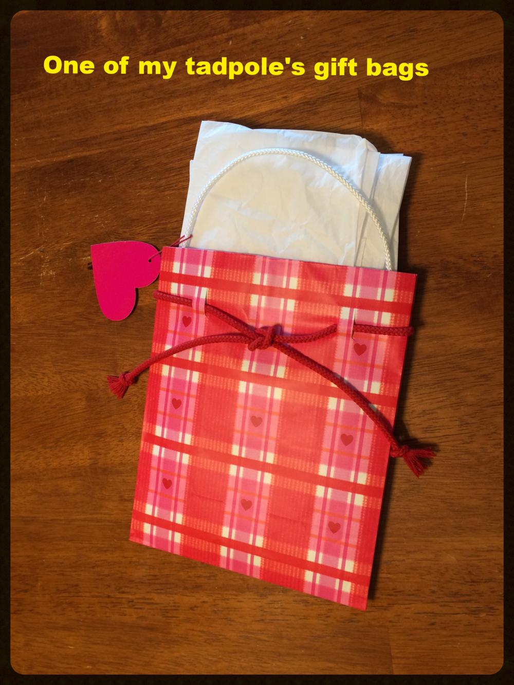 gift bag 2 9-21-15.JPG