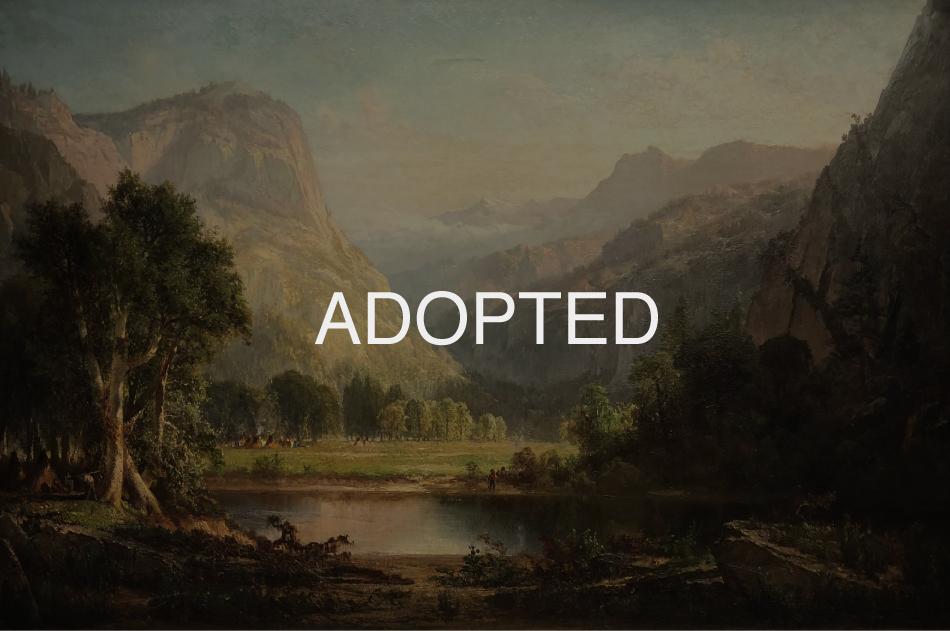 Indian-Encampment,-Thomas-HIll-ADOPTED.jpg