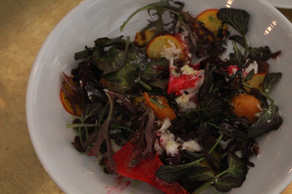 Beet and Burrata Salad