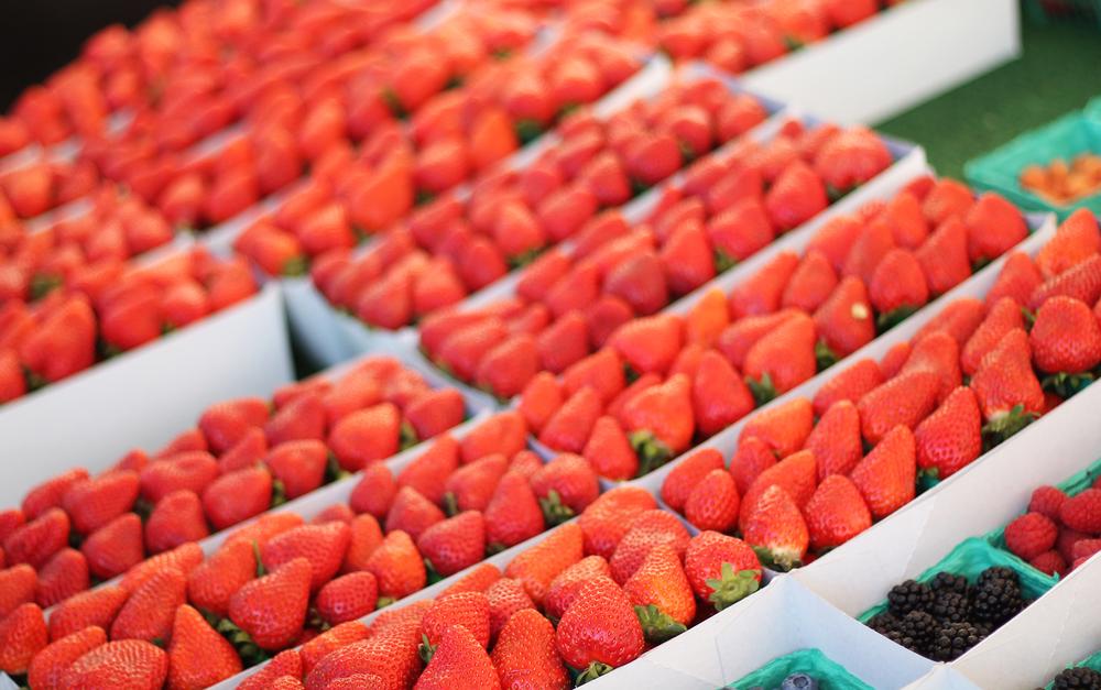 _Farmers Market 2.jpg