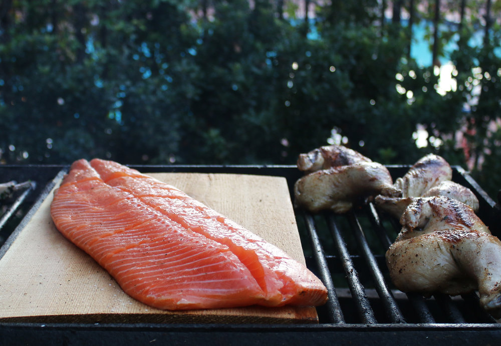 _Salmon 2.jpg