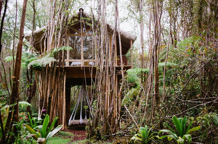 5 Eco Friendly Airbnb Listings For Your Next Green Getaway
