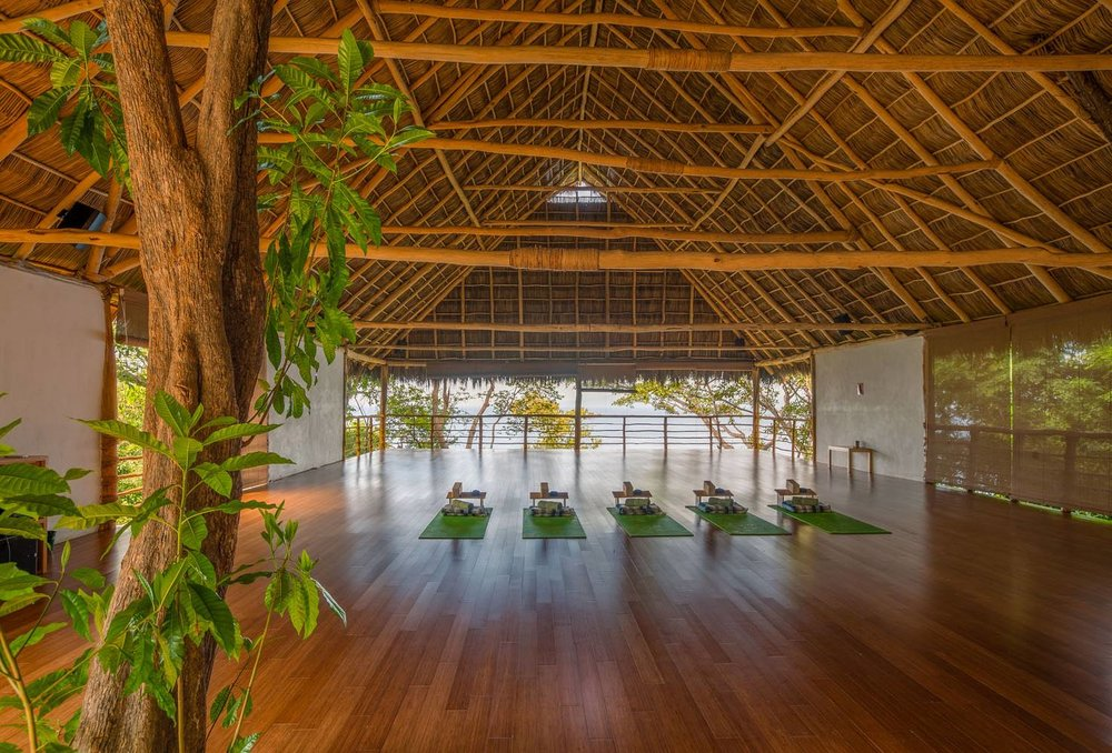 Xinalani Retreat in Puerto Vallarta // 5 Eco-Friendly Luxury Resorts In Mexico For A Sustainable Spring Break
