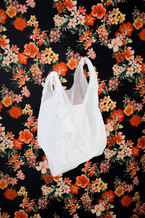 7 zero waste blogs to start your plastic free journey