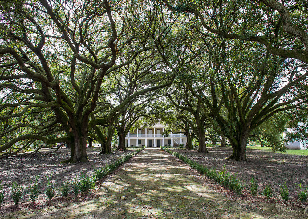 Where To Go In New Orleans: Whitney Plantation