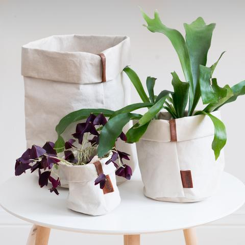 Cachemire Paper Bag from Fig + Yarrow - Zero Waste Holiday Gift Guide on The Good Trade
