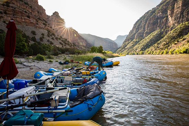 Sometimes the river gods smile in your favor.  This is one of those summers.  A few snaps from an epic week on the Yampa River with all-time crew.  #riverseason #yampariver #wildandscenic #riverlife #rafting #lotterywinners @nrsweb