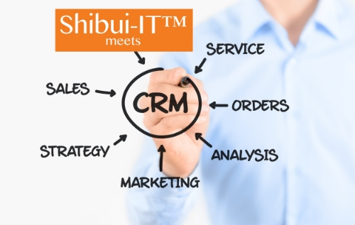 Shibui meets CRM, picture.jpg