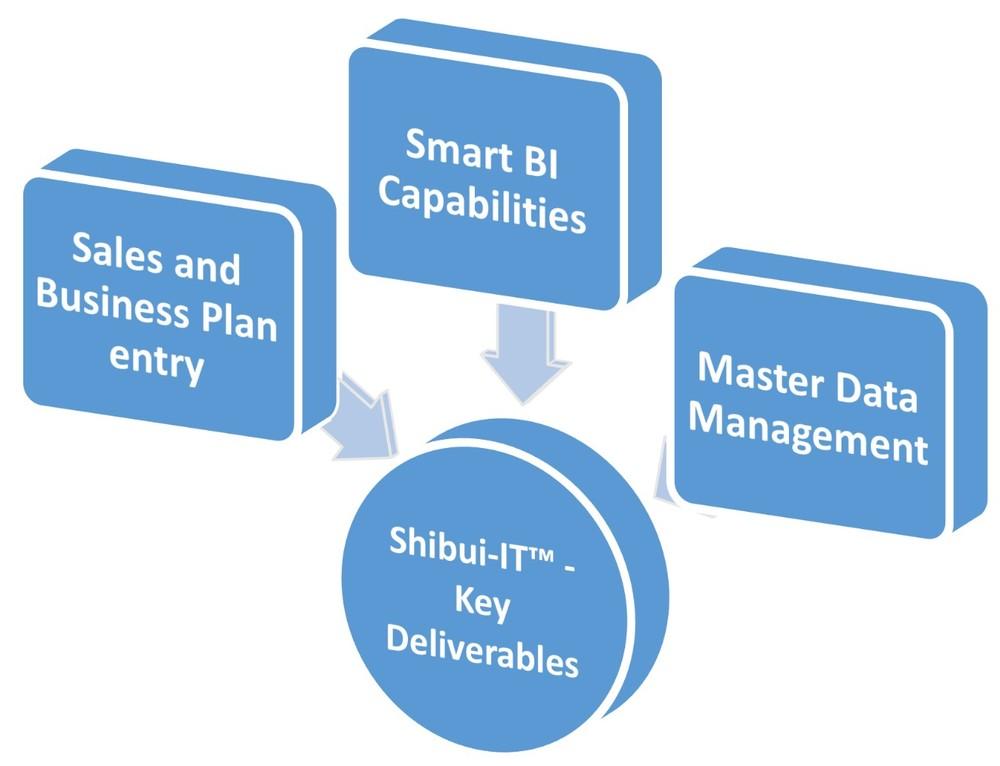 ksdm shibui key deliverables