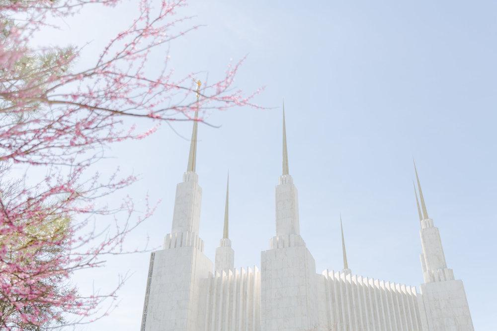 kim_stuart_temple-15.jpg
