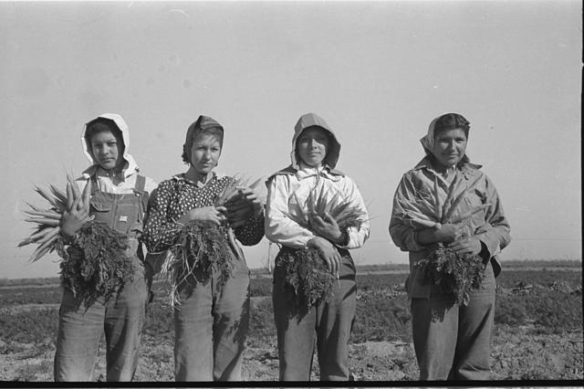 Mexican-girl-carrot-worker-Edinburg-Texas.1939.JPG