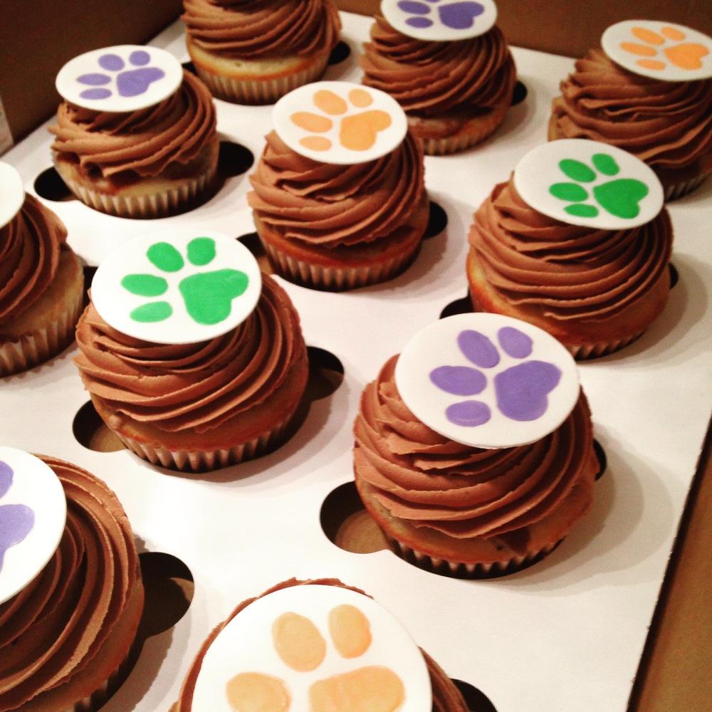 Paw Cupcakes.JPG