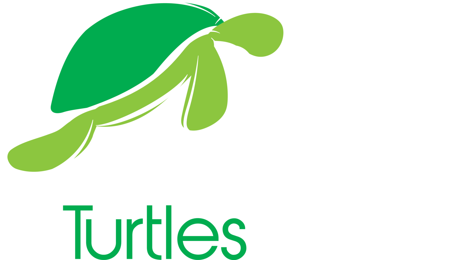 Screaming Turtles