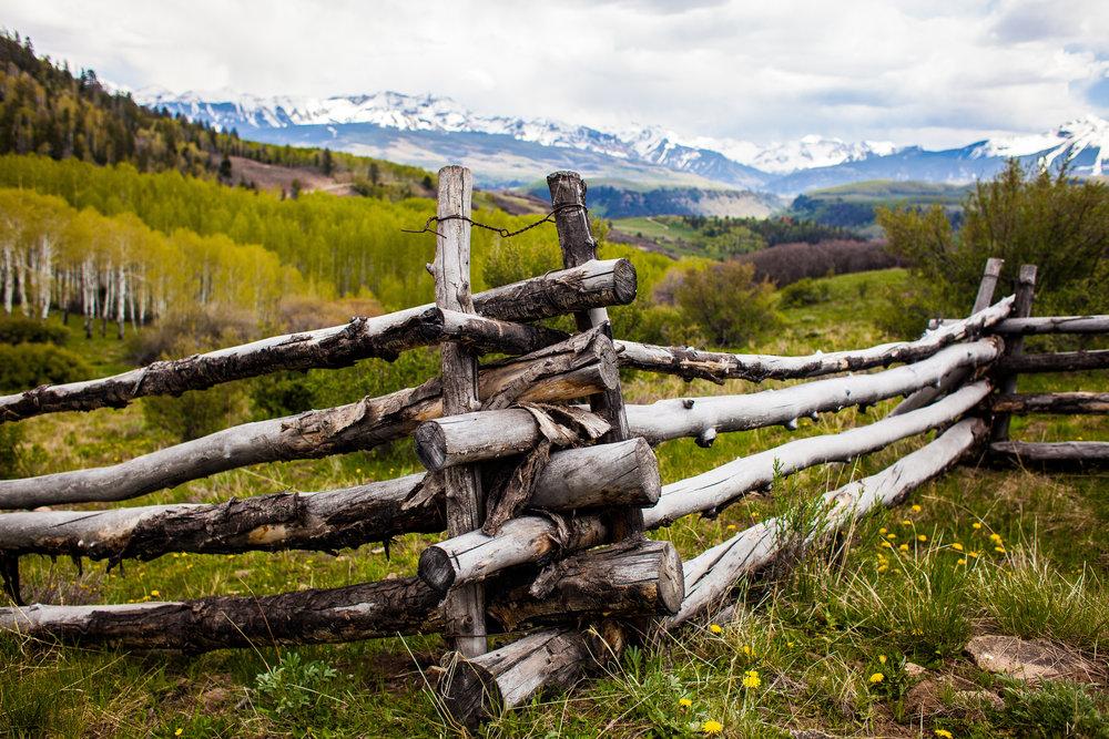 fence+close+site.jpg