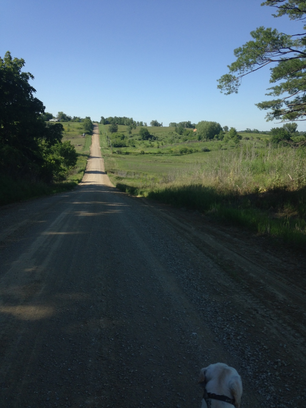 Going-Back-Down-the-Gravel-Road.jpg
