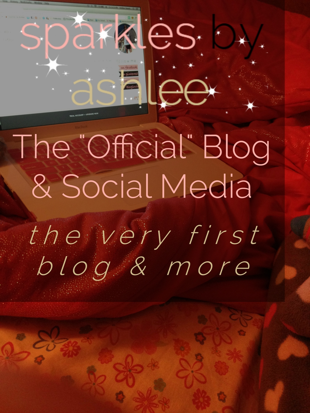 The-Official-Blog-and-Social-Media-Sparkles-by-Ashlee.jpg