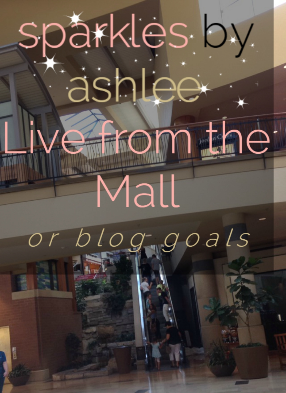 Live-from-the-Mall-or-Blog-Goals-Sparkles-by-Ashlee.jpg