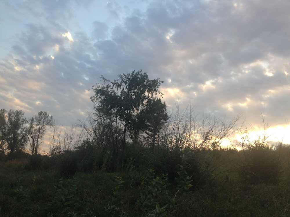 Pastel-Sunset.jpg
