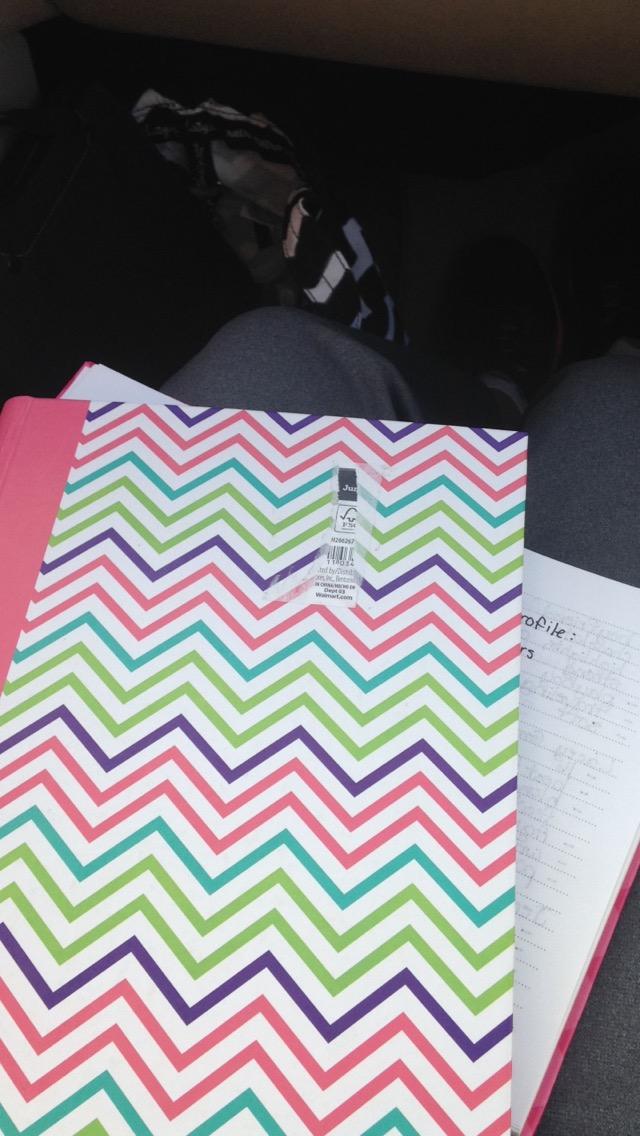 Ashlee-Writing-Notebooks.jpg