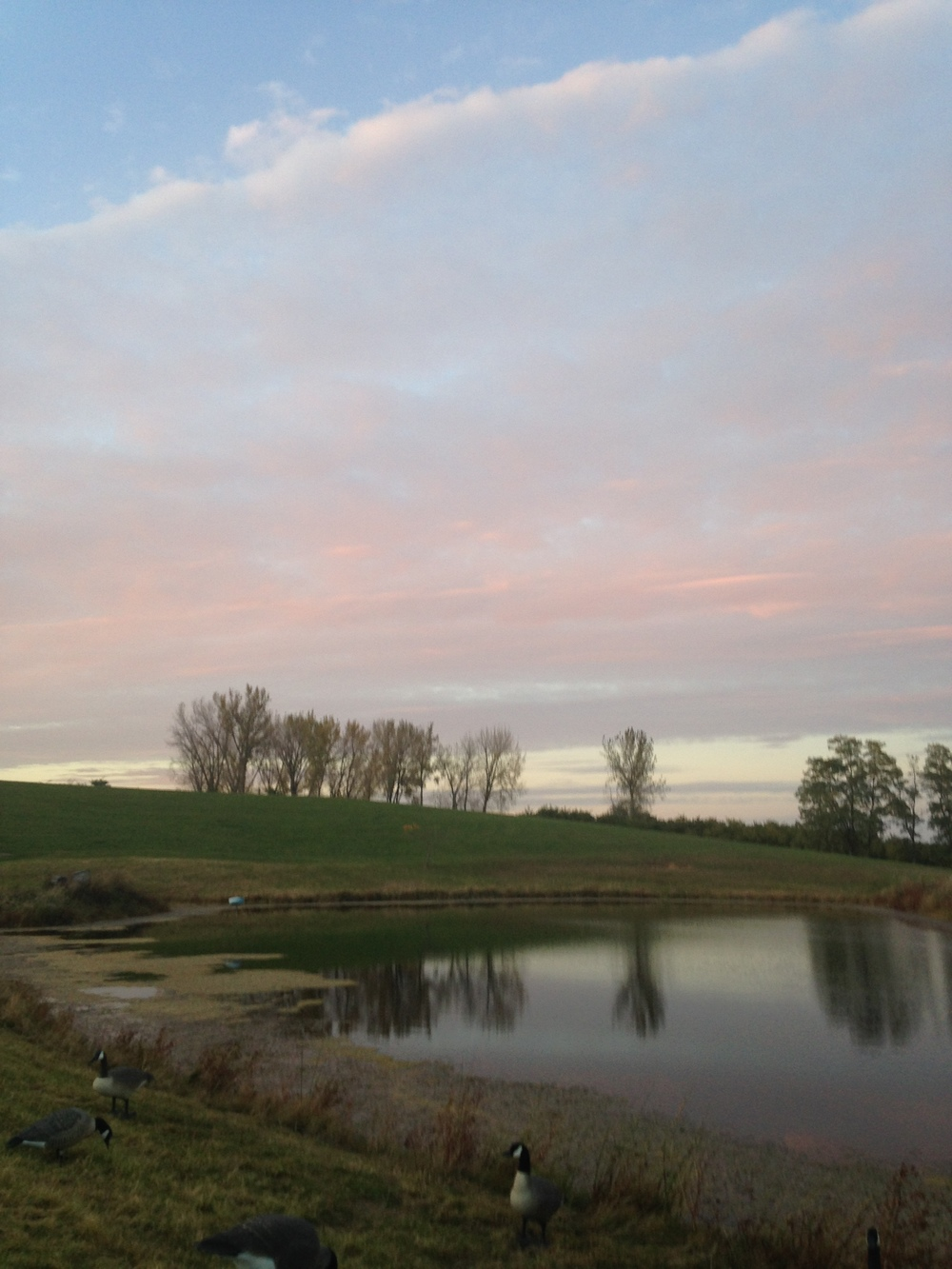 Pastel-Nearby-Pond.jpg