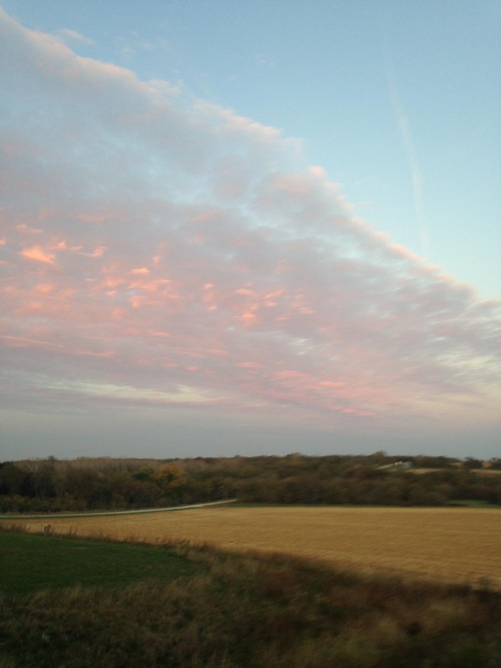 Pastel-Sky-Over-Cornfield.jpg