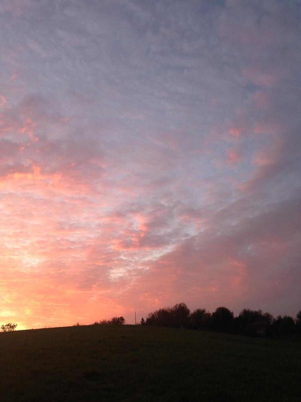 Rosy-Sky.jpg