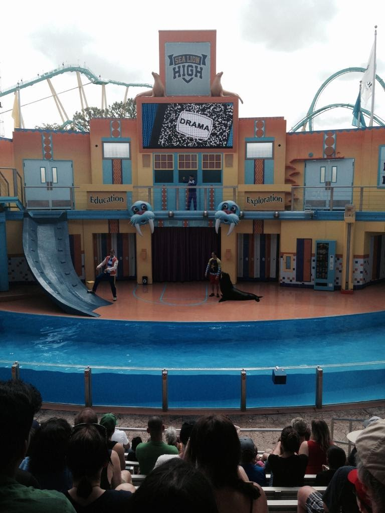 SeaWorld-Sea-Lion-High.jpg