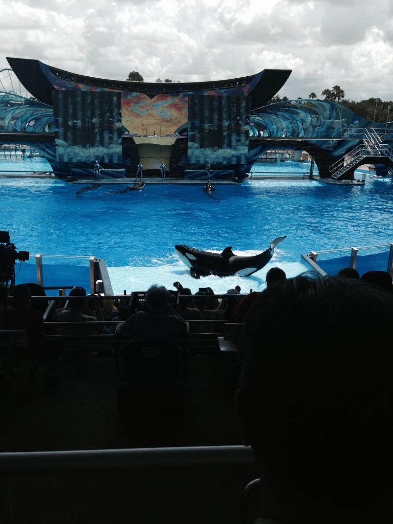 SeaWorld-One-Ocean.jpg