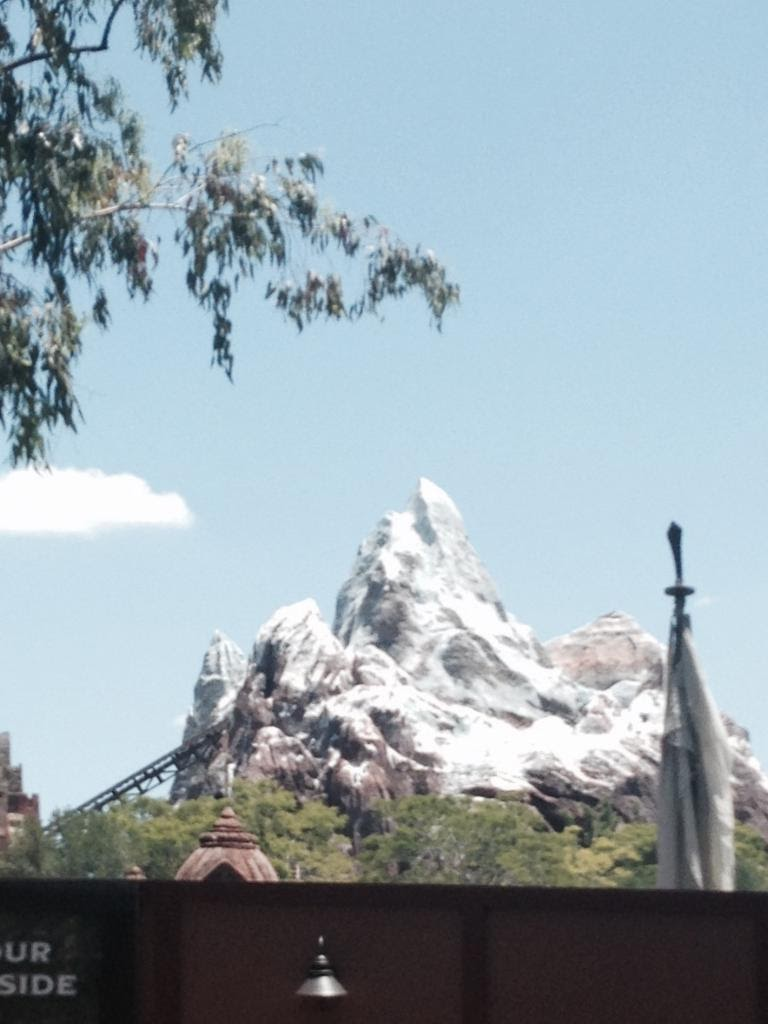 Animal-Kingdom-Everest.jpg
