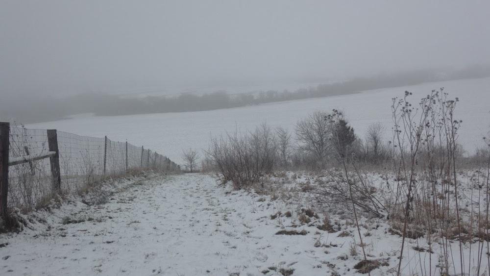 Winter-Snowy-Day.jpg
