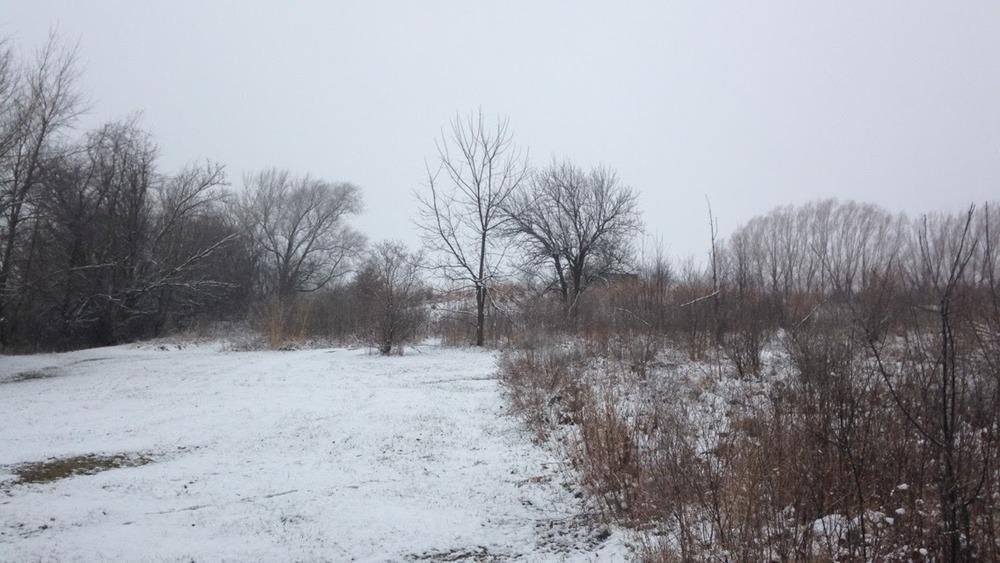 Winter-Day-Property.jpg