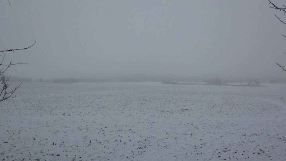 Winter-Day-White-Field.jpg
