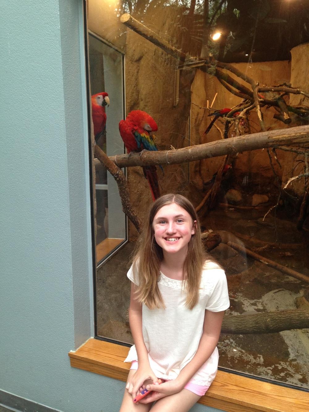 Ashlee-Parrots.jpg