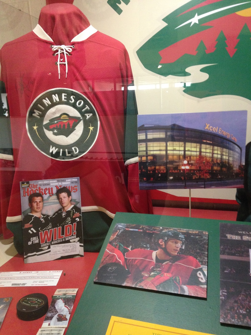 United-States-Hockey-Hall-of-Fame-Minnesota-Wild.jpg