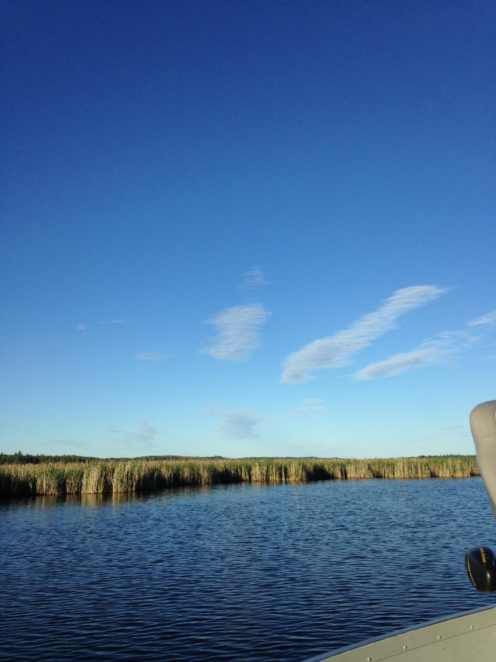 Canada-Water.jpg