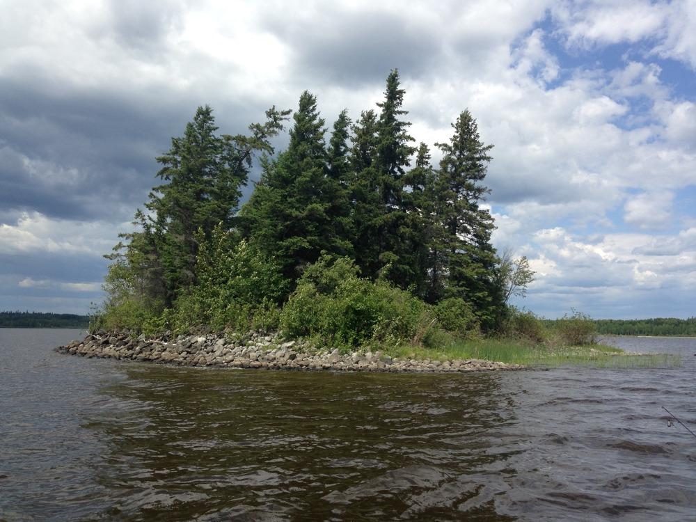 Canada-Island-of-Trees.jpg