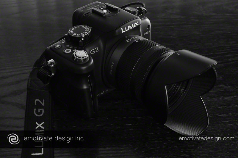 My first interchangeable lens digital camera (ILC) - the Panasonic Lumix DMC-G2 with the LUMIX G VARIO 14-42/F3.5-5.6 kit lens.