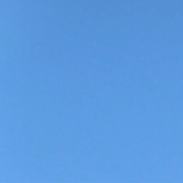the sky is so blue in Sydney! come and spend your sunny Saturday afternoon (4pm) at our favourite @aussieyouthhotel ! ☀️🍻@leungpete's bringing the sax tunes ! see you there ! this is a real photo of the sky !