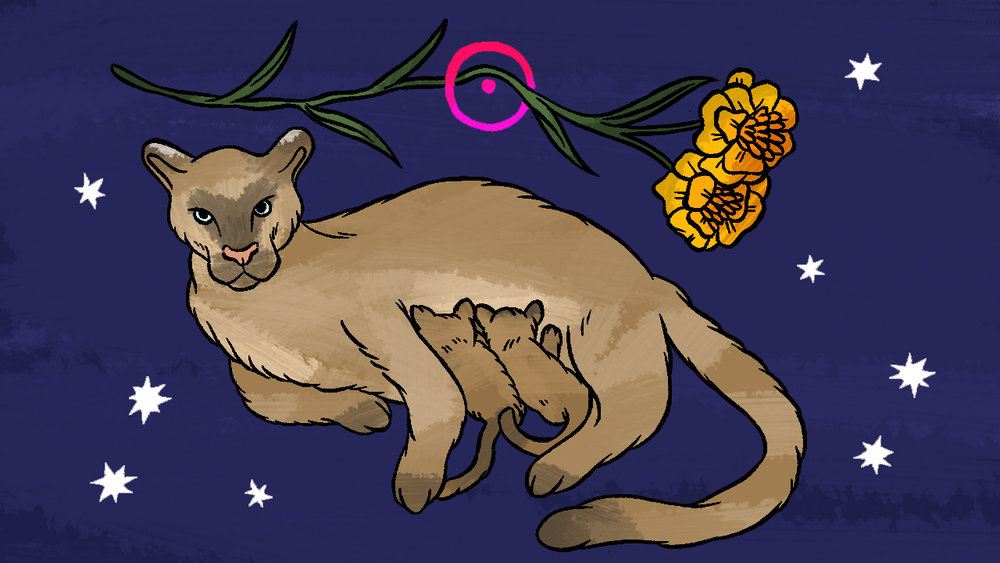 LEO:  FOR THEM.'S MONTHLY QUEER HOROSCOPES